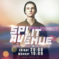SPLIT AVENUE — Not For Everyone! #016 (18.08.2017)
