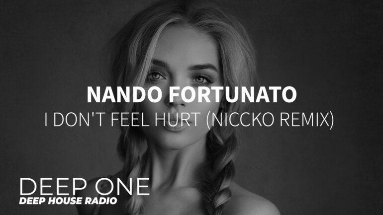 Nando Fortunato - I Don't Feel Hurt (NICCKO Remix)
